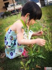 郑嫣笑是我的女儿,本人郑国梁,女儿被确诊为爆发性心肌炎,晴天霹雳!!!