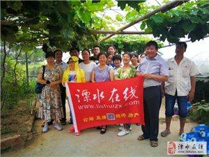 溧水在线网友参加葡萄采摘及七月份随手拍颁奖活动
