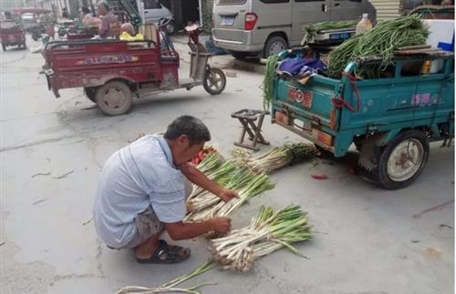 【实拍】澳门威尼斯人游戏平台五里河市场卖菜的那些老人...