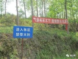 新宁老人失手烧山,整整烧了2.71公顷,已起诉!