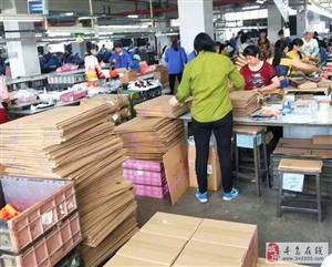 信丰玩具厂招聘男女普工,年龄18-53周岁