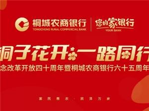 桐城农商银行成立六十五周年大型主题晚会