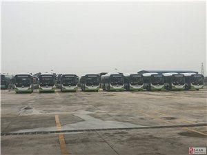 好消息!高州惊现一批新公交车,颜值爆表!赶紧戳开看看!