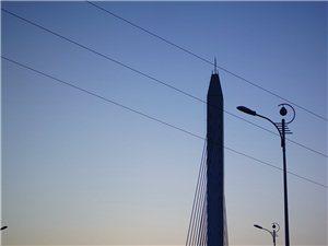 手机随手拍《春申大桥》