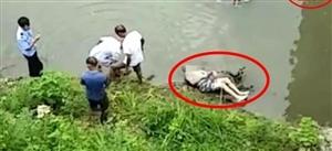修水布甲一男子骑摩托车,不幸坠河身亡!