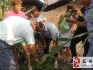 武功县科协扎实开展科技助力 精准扶贫培训(第十一期)