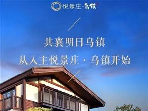 桐乡乌镇【悦景庄】—【悦景庄】售楼处简直'不要太牛'了!