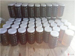 爷爷家养的蜂蜜,可随时来看蜂,有需要请联系