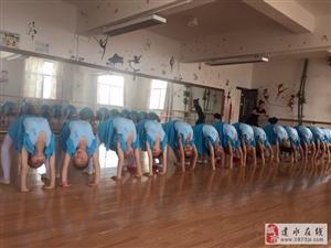 建水海螺舞蹈室是一家专门从事舞蹈培训的机构