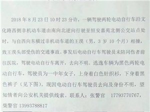交通事故协查通告:金沙国际网上娱乐官网一女子骑电动自行车肇事逃逸!有认识的吗?