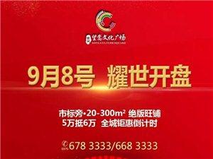 【绿洲·望嵩文化广场】商铺于9月8日耀世开盘