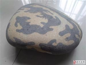 """澳门网上投注娱乐街头500元买到一块奇石,""""身价暴涨""""快看看你家有没!"""