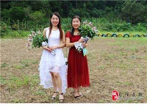 玫瑰山庄与古民居-郭明瑞原创【旬阳县太极城文化研究会】