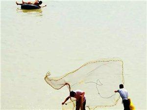 驻马店百舟竞发,千人撒网,宿鸭湖的捕鱼季开始了!