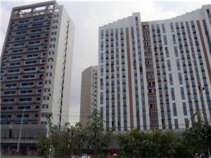 铂金公馆8月份工程进度报道,内附施工进度,面积,价格,优惠