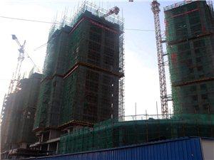 华英・碧波府8月份工程进度报道,内附施工进度,面积,价格,优惠