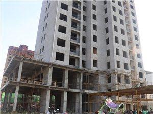 状元花园8月份工程进度报道,内附施工进度,面积,价格,优惠