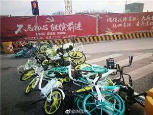汉中啥时候有了这种小黄车?