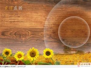 """【绿野书院】娘的""""钱包"""" ――张东红"""