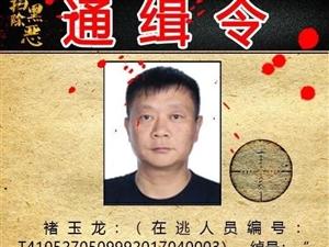 看到这12人请报警!河南省公安厅发布扫黑除恶通缉令