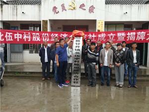 甘井镇北伍中村股份经济合作社揭牌成立
