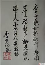 张磊先生软笔书法作品欣赏!