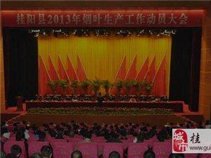 澳门网上投注游戏县2013年烟叶生产工作动员会议召开