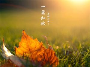 """秋季养生只知""""春捂秋冻""""?处暑过后更要""""润""""养"""