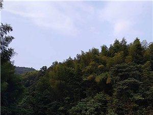 故乡的秋天