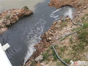 化州大桥底惊现神秘洞穴偷排污水,鉴江河面被染漆黑!