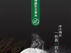 生命,有时只需要一碗白米饭