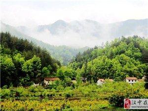 留坝县秦岭生态环境突出问题专项整治持续加力
