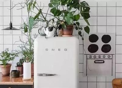 用了10年冰箱,才知道这里有个开关,再也不怕冰箱结冰!
