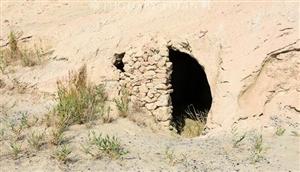 青疆交界的戈壁中发现一个大型剿匪基地,窑洞兵营及战壕保存完好