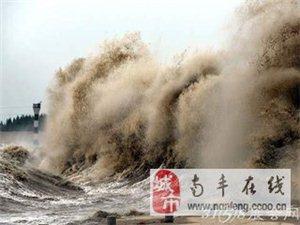 �X江潮  �蹑�  海��皮革城三日游