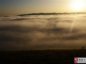 【大美张家川】关山风光大道云海翻滚尤如人间仙境
