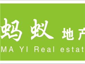 红杉娱乐蚂蚁地产招聘房产店长1名,房产经纪人5名