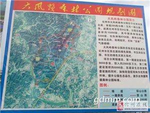 化州大风岭森林公园12月开建!总投资7800多万!