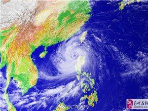"""台风""""山竹""""将严重影响高州,查看台风实时动态!"""