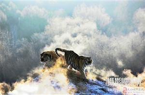 王俊华HIPA国际摄影大赛参赛作品-国际联盟摄影家协会推荐