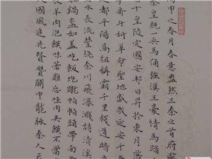 三秦�-浮梅