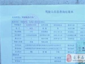 驻马店一司机买假证上路被查将被罚款拘留