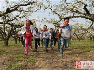 五河县沟东梨园景区获评省级乡村旅游和休闲农业示范区