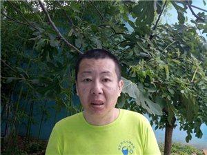 中年女子在淮北被救助,疑似澳门威尼斯人游戏网站县刘店乡闫庄村人