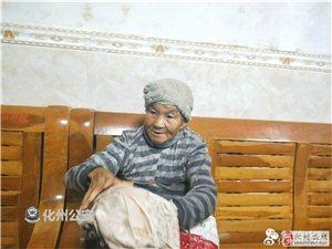 """?""""山竹""""走了,化州七旬婆婆,你的家在哪里?"""