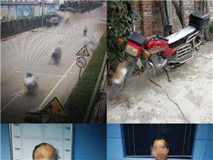小学生被摩托车撞伤,肇事者驾车逃逸终被抓