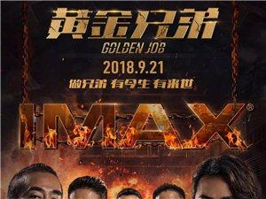 """【黄金兄弟】9月21日,""""古惑仔"""" 江湖重聚!"""