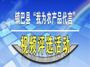镇巴县镇(办)农特产品投票评选活动