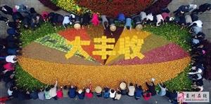 """漂亮!栾川6吨农产品打造巨碗农家菜,喜迎首个""""农民丰收节"""""""