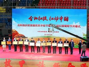 合阳县举办庆祝首届农民丰收节暨第三届红提葡萄节活动